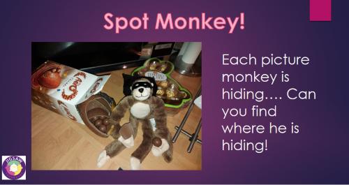 Virtual JIGSAW Friendly Friday – Spot Monkey