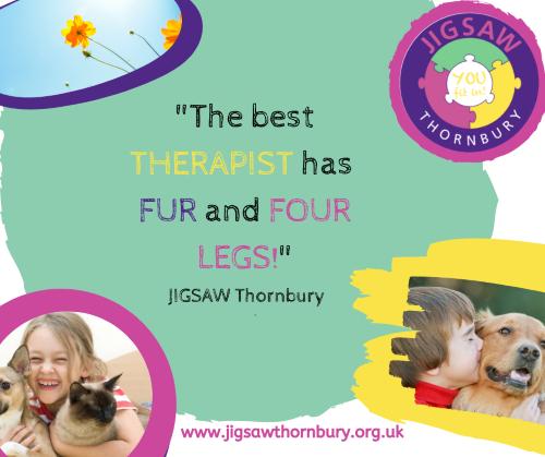 Virtual JIGSAW Thankful Thursday – Pets!